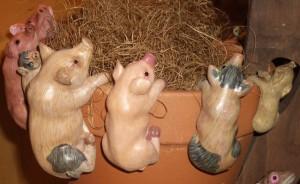 pig pothangers
