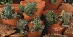 animal pothangers, flower pot decorations, animal garden ornaments