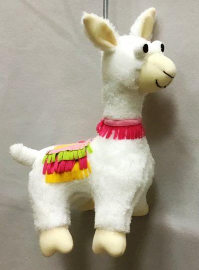 Spring animal llama